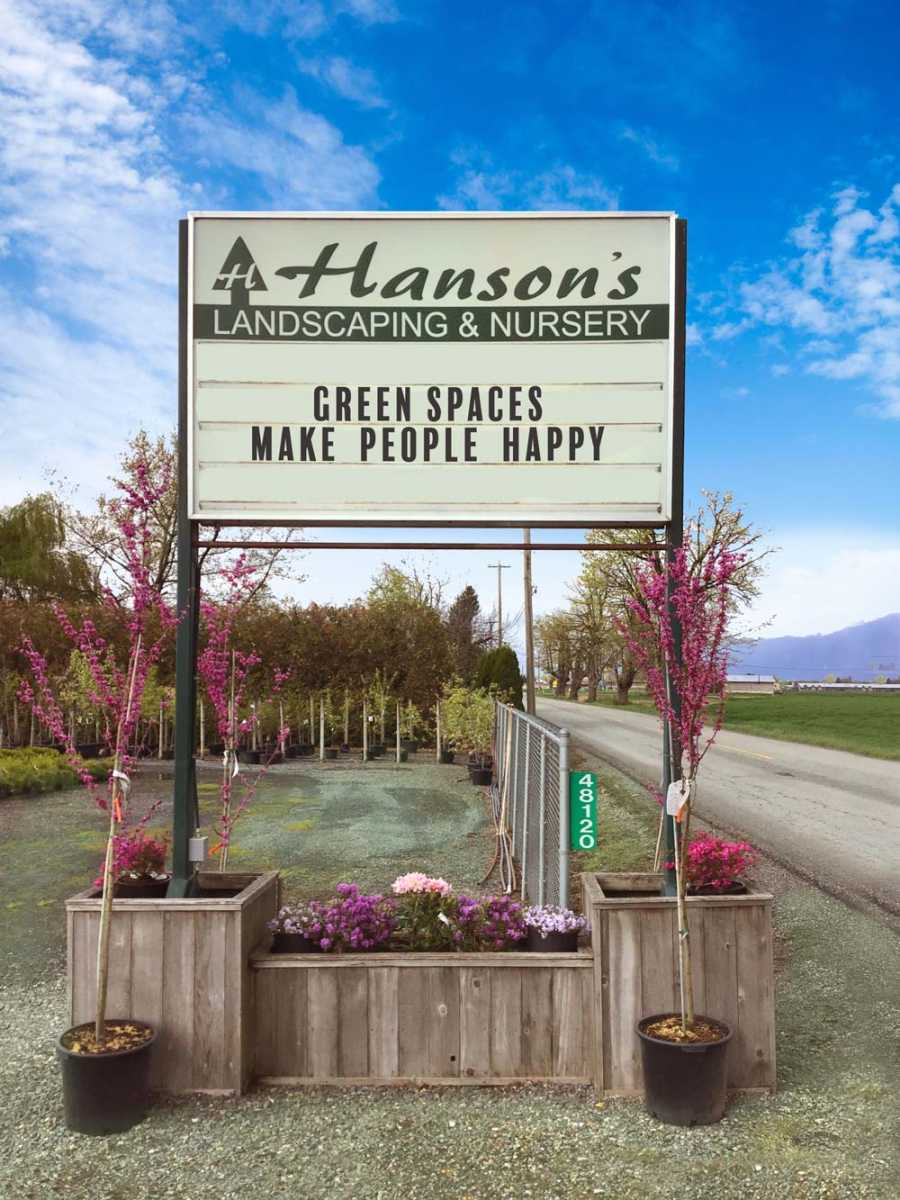 Green Spaces Make People Happy
